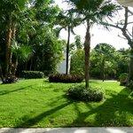 Hotel Mayan Palace - Jardines