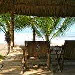Vue sur la plage à 50 m du bungalow