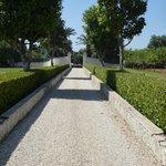 Photo de Villa Magnolia