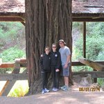 Me, wife, and oldest daughter with one of the large redwoods in Old Mill Park
