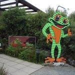 Whistling Frog Cafe