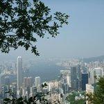 View on the peak walk