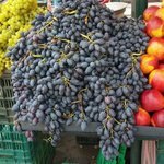 Luscious vine grapes at monastiraki
