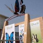 Butterfly Park Restaurant