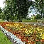 Valley Gardens 1