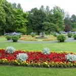 Valley Gardens 3