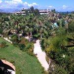 """Magnifiques """" jardins d'Eden"""" (vue de notre chambre). Mer juste à droite"""