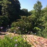 vue de la terrasse privative