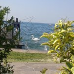 View from lakeside private sunbathing area of hotel Villa Letizia