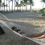Three Hammocks available