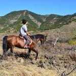 Lo mejor del hotel, a parte de sus vistas, el paseo en caballo:)