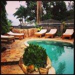 the pool/lounge area