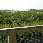 """View from """"Boardwalk"""""""