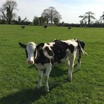 Foto di Ballindrum Farm Bed and Breakfast