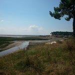 côté bassin à marée basse
