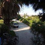 Heliotopos driveway