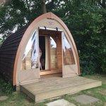 Our pod Snuggle Wood