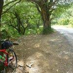 On route to Rincon Natl. Park