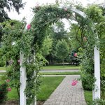 trellis on edge of the rose garden