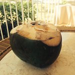 The coconuts every day!!! Just ask the gardener