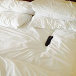 tv remote placed into sunk- in mattress!