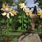 The sunflower hole