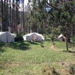 camp! beautiful