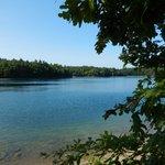 Walden Pond 8/8/2014