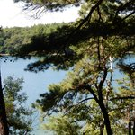 Walden Pond 2 8/8/2014