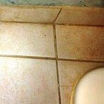 Hair & Filth on Bathroom Floors II