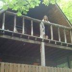 Upper loft deck