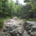 Rocky well worn trail