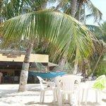 Vista del comedor y zona de playa del hotel