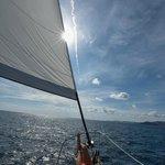 Sail with Capt. Mario