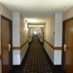 The long corridors are well lit and clean