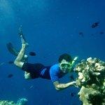 berfoto dengan batu karang dan ikan