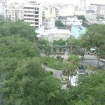 The park of the Iguanas