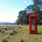 Spicers Peak Grounds