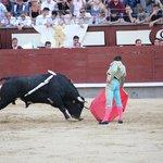 Las Ventas Bull Fight