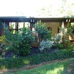 Homestay from garden