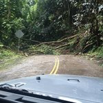 One of many landslides blocking the scenic route after Iselle.