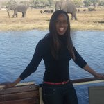 boat cruising in chobe river