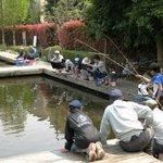 Пруды для рыбалки