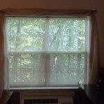 no curtains