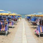 La Playa Bagno 75