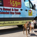 Our Boxers in front of the Motel Shuttle Service Van.