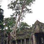 Beautiful Temples