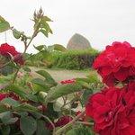 Haystack framed by roses