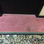 stained carpets