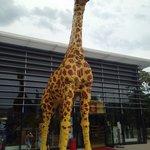 Naast de deur Lego giraffe